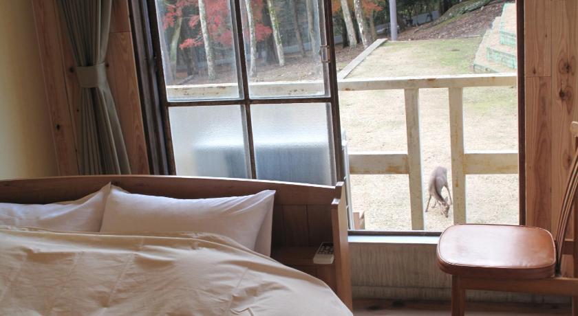 BEST HOSTELS IN JAPAN: The Deer Park Inn